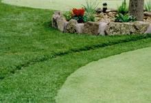 Рулонный газон - кондиционер для садового участка.
