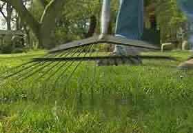 Причесывание газона